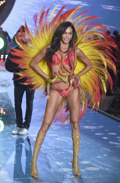 5db9e3efd80 Joan Smalls - The Looks We Loved from the 2015 Victoria s Secret ...