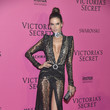 Alessandra Ambrosio in a Plunging Sheer Gown
