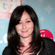 Shannen Doherty And Ashley Hamilton
