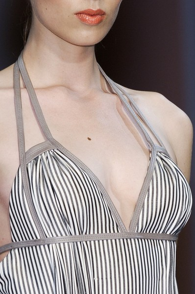Lefranc-Ferrant at Couture Fall 2010 (Details)