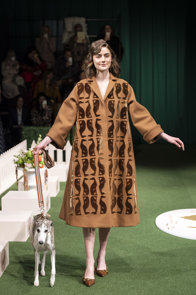 Lela Rose at New York Fall 2019 [fashion,dog,fur,canidae,dalmatian,conformation show,fawn,non-sporting group,performance,fashion design,lela rose,fashion,runway,performance,fashion design,non-sporting group,new york fashion week,fashion show,conformation show,london fashion week,lela rose,2019 new york fashion week,fashion show,london fashion week,runway,fashion,fashion week,model,hellessy]