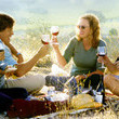 Get Excited About Your Trip With Some Classic Wine Country Movies