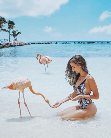 Flamingo Beach, Aruba, The Caribbean