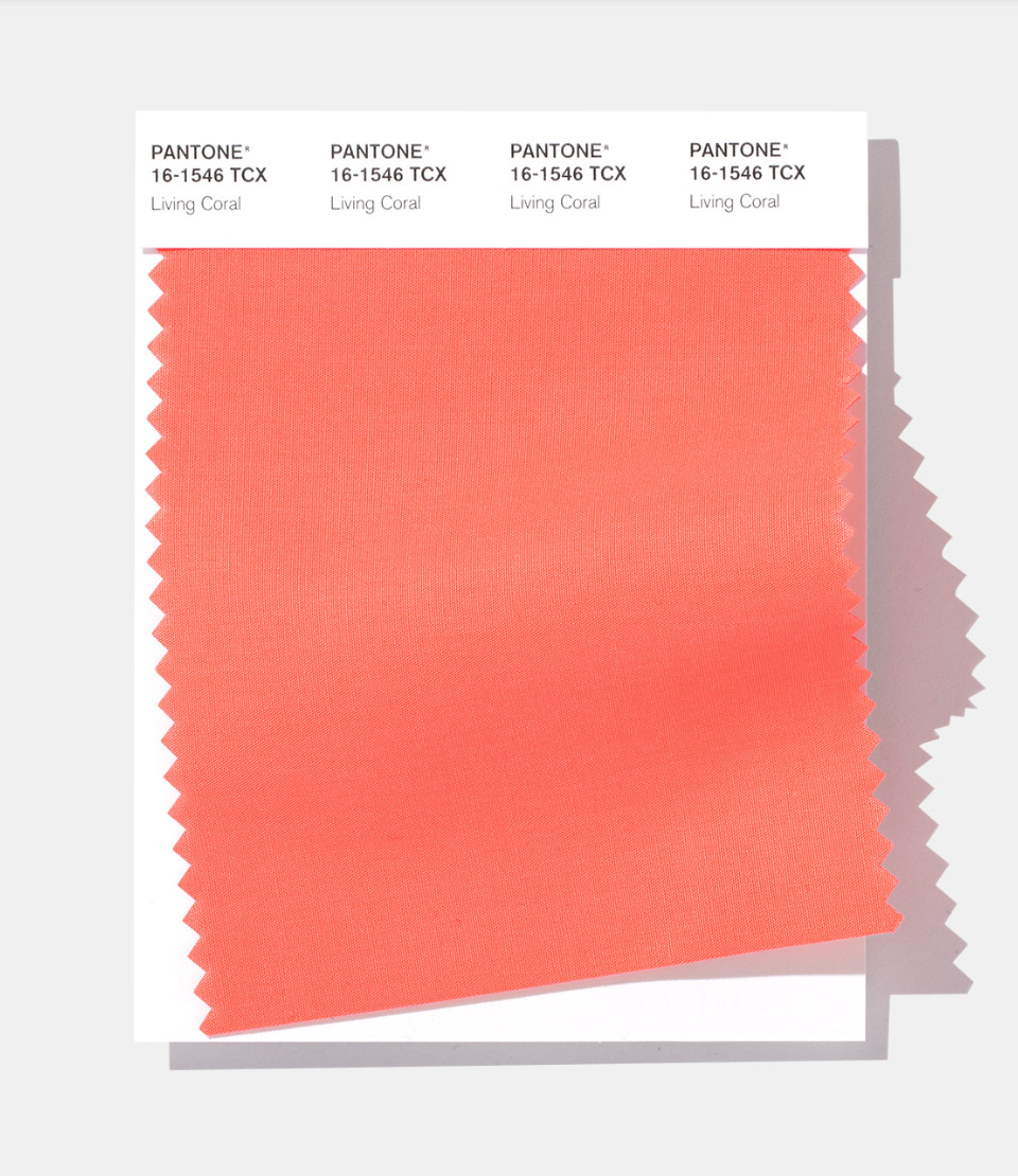 You Would Never Guess Pantone's 2019 Color Of The Year