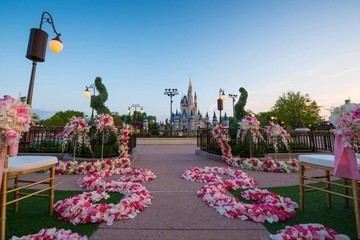 Would You Get Married in Front of Cinderella's Castle at Disney's Magic Kingdom?