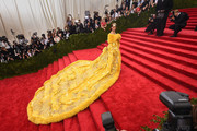 The Most Daring Met Gala Dresses Ever Worn On The Red Carpet