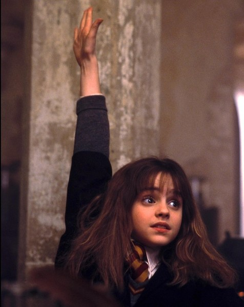Hermione Granger, 'Harry Potter'