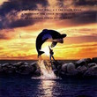 Free Willy (1993, PG)