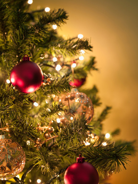Decorate Your Christmas Tree, and Home