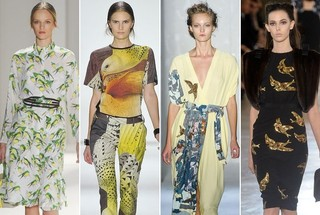 Off the Runway: Birds of a Feather