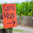Get Lost In A Corn Maze