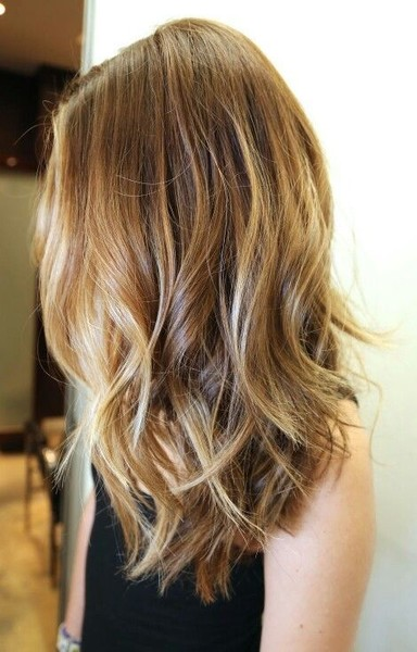 Try Bronde Hair Color