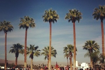 Coachella 101: What to Expect at the Festival - Day 2