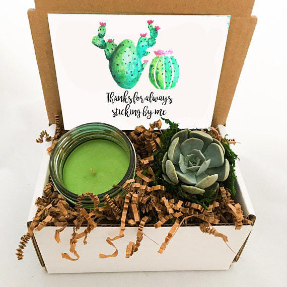 Candle And Succulent Set
