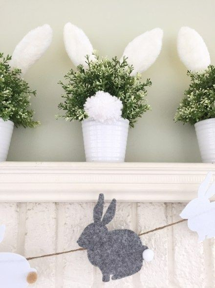 DIY Bunny Tail Plants