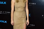 Ashley Greene Suede Dress