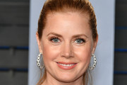 Amy Adams Ponytail