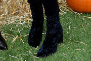 Ashley Tisdale Ankle Boots