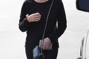 Ashley Benson Quilted Leather Bag