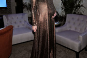 Molly Sims Maternity Dress